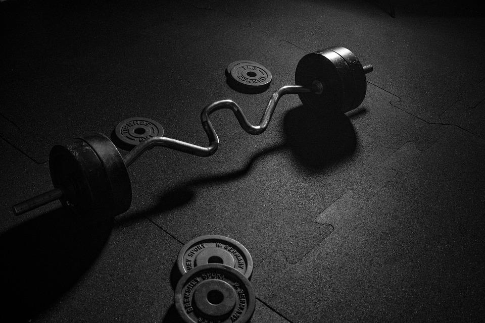 Body Body Revolution