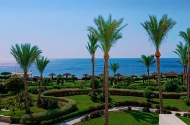Zájem o Egypt
