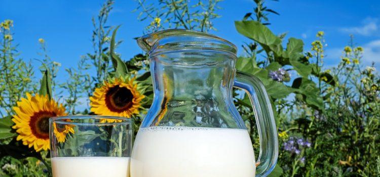 Neprospívá mléko vašemu zdraví? Víme, jak mléko nahradit