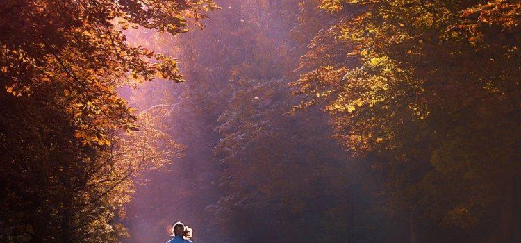 Běžecké aplikace, které budou spolehlivě evidovat uběhnuté kilometry